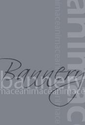 animace_bannery